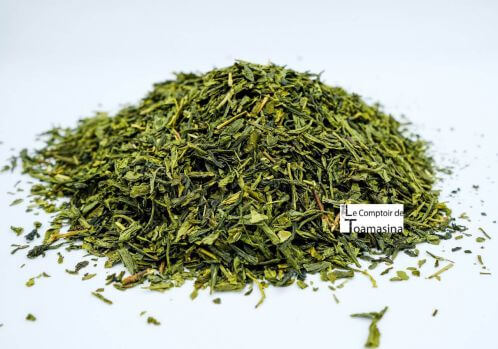 Sencha Green Tea, purchase, virtues, infusion